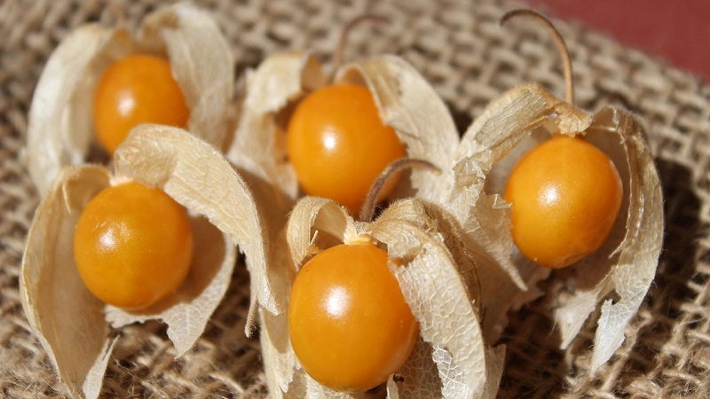 GoldenBerries For Glowing Skin